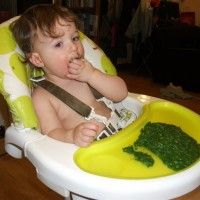 Top up your toddler with vitamins and iron – the green way