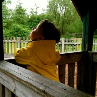 Pensive in the playground – Photo of the week