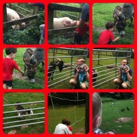 Trip to Coombe Mill – #CountryKids
