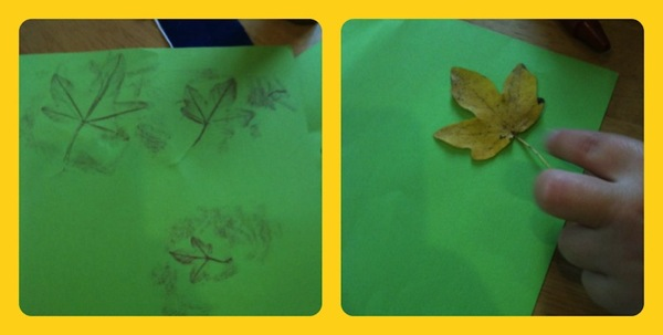 Leaves Collage 4