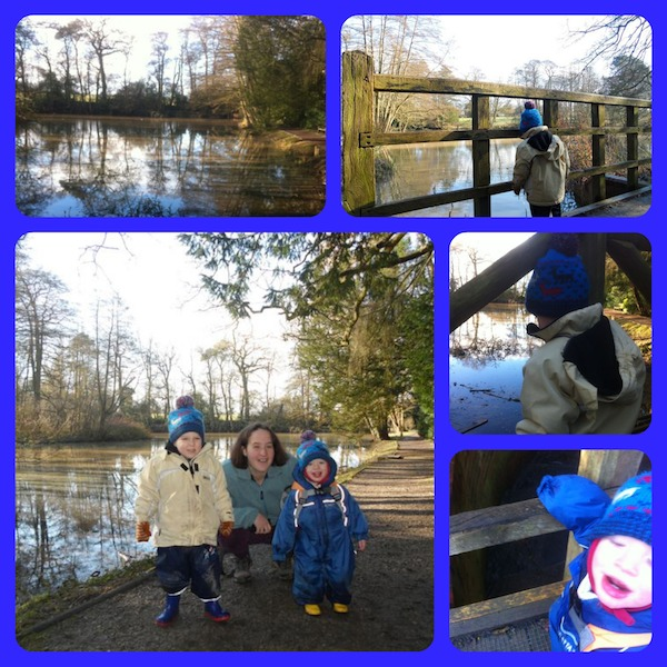 Baddesley Collage 2