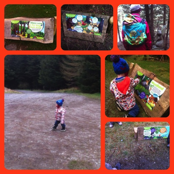 Whinlatter 2 Collage jpg