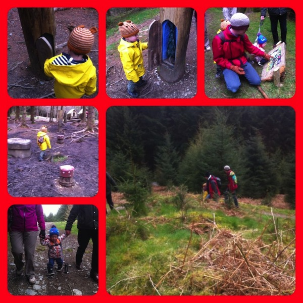 Whinlatter 3 Collage jpg