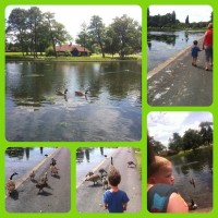 Sunny afternoon exploring Bournville parks – #CountryKids